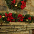 Crimson Harvest Battery Operated LED Holiday Garland, Warm White Lights