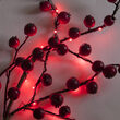 Red Battery Operated Fairy LED Lights, Green Wire