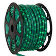 Pearl Green Rope Light, 120 Volt