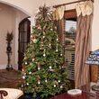 Canadian Fir Prelit Tree
