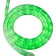 True Green LED Rope Light, 120 Volt