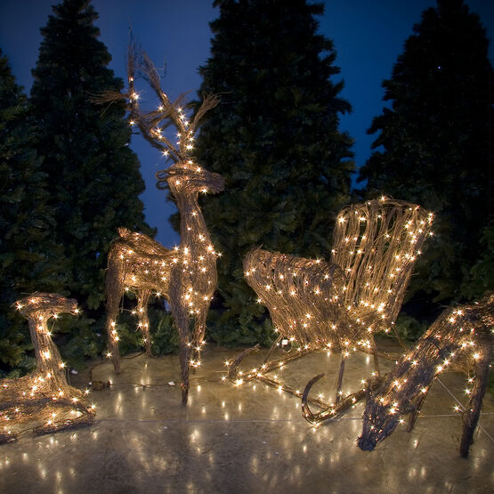 35 grapevine sleigh 250 cool white led lights - Cool White Outdoor Christmas Decorations