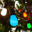 Commercial Multicolor Party Lights, S14 E26 - Medium Bulbs on Black Wire