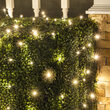 4' x 6' Warm White Twinkle 5mm LED Christmas Net Lights, 100 Lights on Green Wire