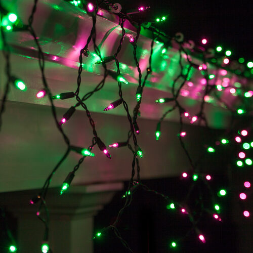Green Christmas Lights.Purple Green Mini Icicle Lights On Black Wire Wintergreen Corporation Wintergreen Corporation