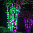 5mm Wide Angle Purple, Green LED Christmas Lights on Black Wire