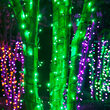 5mm Wide Angle Green LED Christmas Lights on Black Wire