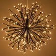 Brown Starburst Lighted Branches, Warm White LED, Twinkle