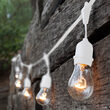 Commercial Clear Patio String Lights, A19 E26 - Medium Bulbs on White Wire with Drops