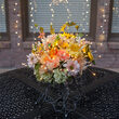 """12"""" Silver Starburst Lighted Branches, Warm White LED, Twinkle"""
