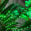 8.2' Curved Commercial LED Palm Tree