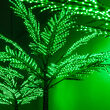6' Classic Commercial LED Palm Tree with Base