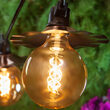 G125 Antiqued Glass Warm White FlexFilament TM Globe Light LED Edison Bulbs