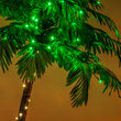 5' Curved LED Palm Tree