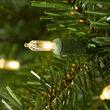 Douglas Fir Prelit LED Holiday Garland, Warm White Lights