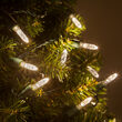 M5 Mini Ice Warm White LED Christmas Lights on Green Wire
