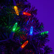M5 Mini Ice Multi Color LED Christmas Lights on Green Wire
