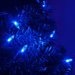 T5 Blue LED Christmas Tree Lights on Green Wire