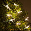 T5 Twinkle Warm White LED Christmas Tree Lights on Green Wire