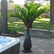 7.5' Bottle Commercial LED Palm Tree