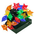Multicolor Battery Operated Star LED Lights, Green Wire