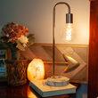 G95 Transparent Glass Warm White FlexFilament Globe Light LED Edison Bulbs