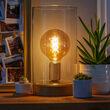G125 Antiqued Glass Warm White FlexFilament Globe Light LED Edison Bulbs