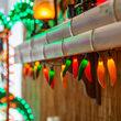 Chili Pepper Light Set, 35 Multicolor Lights