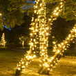 5mm Wide Angle Warm White LED Christmas Lights on Green Wire