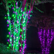 5mm Wide Angle Green LED Christmas Lights on Green Wire