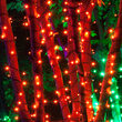 Kringle Traditions 5mm Amber LED Christmas Lights on Green Wire