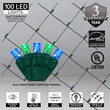 4' x 6' Blue, Green 5mm LED Christmas Net Lights, 100 Lights on Green Wire