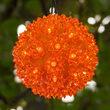 """6"""" Amber LED Starlight Sphere, 70 Lights"""