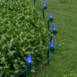 C7 Blue OptiCore Christmas LED Pathway Lights, 100 Lights, 7.5 Inch Stakes, 100'