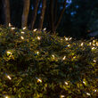 4' x 6' Warm White M5 LED Christmas Net Lights, 100 Lights on Green Wire