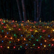 4' x 6' Multicolor Mini Christmas Net Lights, 150 Lights on Green Wire