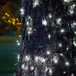 5mm SoftTwinkle Wide Angle Cool White LED Christmas Lights on Green Wire