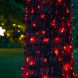5mm SoftTwinkle Wide Angle Red LED Christmas Lights on Green Wire
