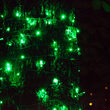 5mm SoftTwinkle Wide Angle Green LED Christmas Lights on Green Wire