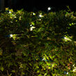 4' x 6' Warm White SoftTwinkle 5mm LED Christmas Net Lights, 70 Lights on Green Wire