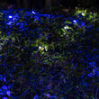 4' x 6' Blue, Cool White SoftTwinkle 5mm LED Christmas Net Lights, 70 Lights on Green Wire