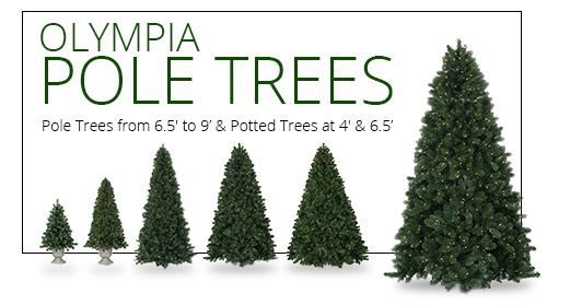 Olympia Pine Pole Tree and Potted Trees