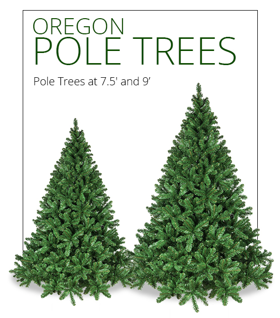 Oregon Fir Pole Trees
