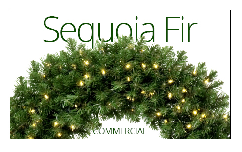 Sequoia Fir Christmas Wreath