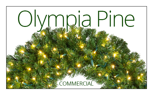 Olympia Pine Wreaths