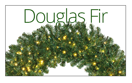 Douglas Fir Wreaths