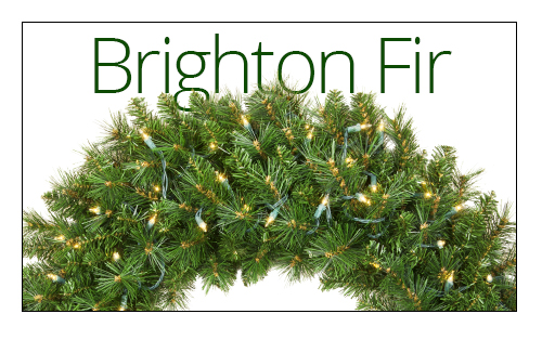 Brighton Fir Wreaths