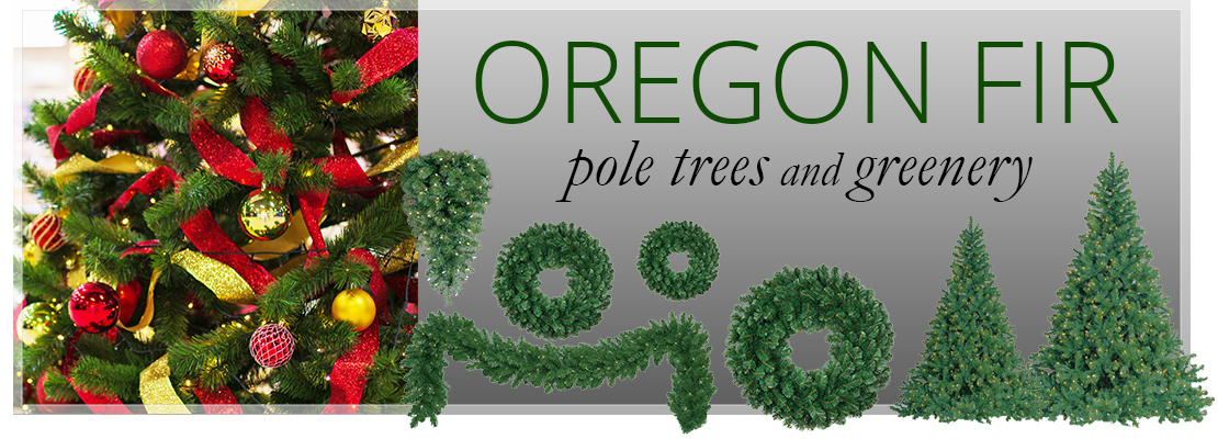 Oregon Fir
