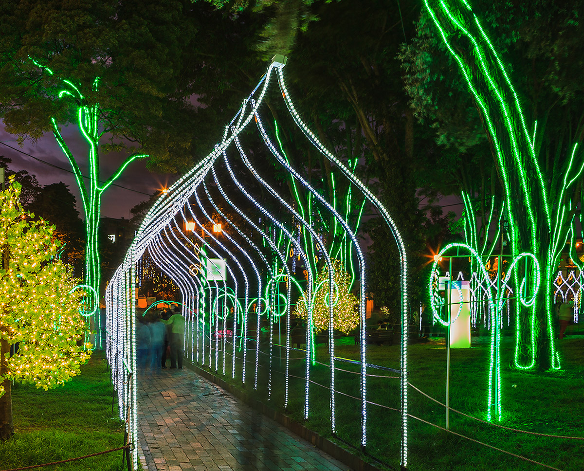 Rope Light Used to Outline Christmas Archways